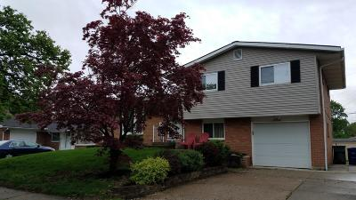 Franklin County, Delaware County, Fairfield County, Hocking County, Licking County, Madison County, Morrow County, Perry County, Pickaway County, Union County Single Family Home For Sale: 1230 Norman Drive