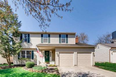 Powell Single Family Home For Sale: 8395 Gallop Drive