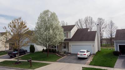 Westerville Single Family Home For Sale: 5652 Genoa Farms Boulevard