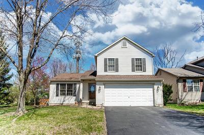 Blacklick Single Family Home For Sale: 8088 Chapel Stone Road