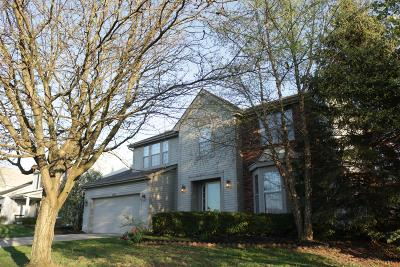 Lewis Center Single Family Home For Sale: 1822 Royal Oak Drive
