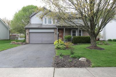 Westerville Single Family Home For Sale: 579 Apple Street