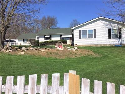 Union County Single Family Home For Sale: 9980 State Route 736
