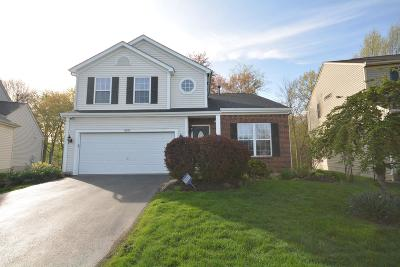 Blacklick Single Family Home For Sale: 8595 Old Ivory Way