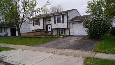 Galloway OH Single Family Home For Sale: $199,999