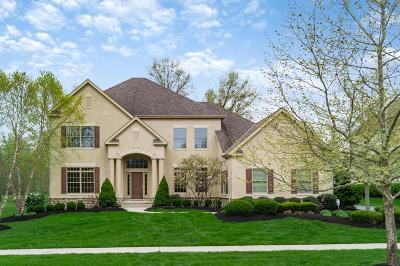 Dublin Single Family Home For Sale: 6699 Raynor Court