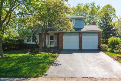 Reynoldsburg Single Family Home For Sale: 908 Noyes Drive