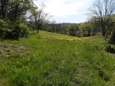 Chillicothe Residential Lots & Land For Sale: W Us Hwy 50