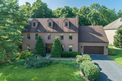 Dublin Single Family Home For Sale: 4825 Donegal Cliffs Drive
