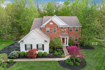 Blacklick Single Family Home For Sale: 2878 Creekwood Estates Drive