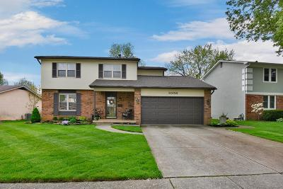 Reynoldsburg Single Family Home For Sale: 1056 Briarcliff Road