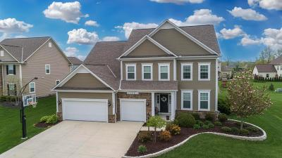Dublin  Single Family Home For Sale: 7152 Cabernet Court