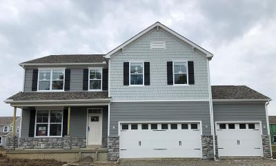 Delaware Single Family Home For Sale: 147 Marblewood Drive