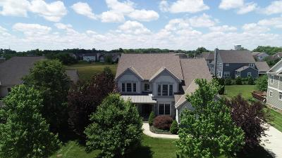 Dublin Single Family Home For Sale: 5842 Vandeleur Place