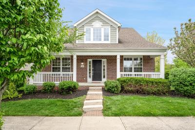 Westerville Single Family Home For Sale: 785 Woodbend Drive