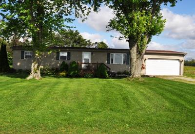 Millersport Single Family Home For Sale: 9730 Lake Road NE