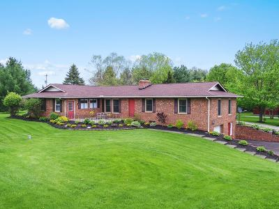 Sunbury Single Family Home For Sale: 13040 Chambers Road