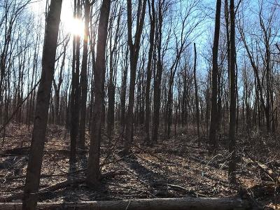Johnstown Residential Lots & Land For Sale: 7955 Harmony Church Road