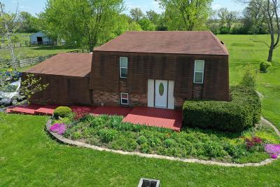 Grove City Single Family Home For Sale: 9009 Alkire Road