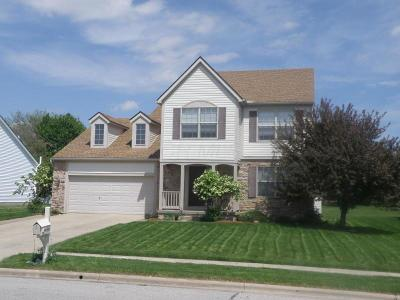 Reynoldsburg Single Family Home For Sale: 864 Mueller Drive