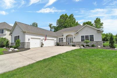 Pickerington Single Family Home For Sale: 270 Blue Jacket Circle