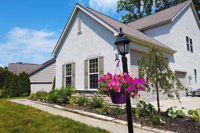Galena Single Family Home For Sale: 5693 Harrow Glen Court