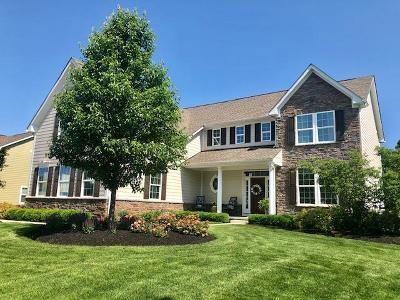 Galena Single Family Home For Sale: 6093 Acadia Court
