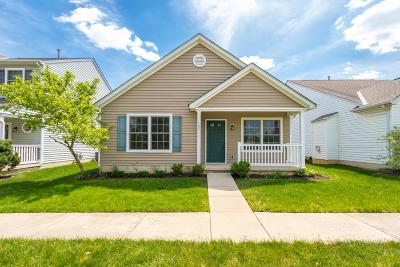 Lewis Center Single Family Home Sold: 125 Feathertip Lane