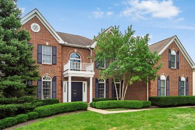 Dublin Single Family Home For Sale: 4815 Vista Ridge Drive
