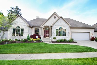 Columbus Single Family Home For Sale: 696 Camden Yard Court