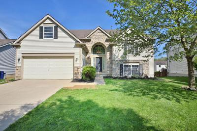 Westerville Single Family Home For Sale: 1219 Blacksmith Drive