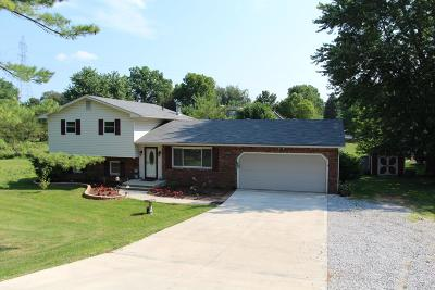 Westerville Single Family Home For Sale: 7481 Africa Road