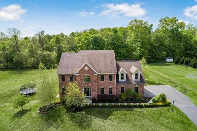 Single Family Home For Sale: 179 Stone Creek Drive