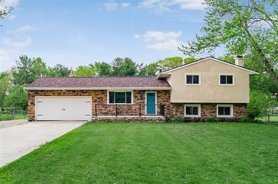 Westerville Single Family Home For Sale: 6045 Alice Drive