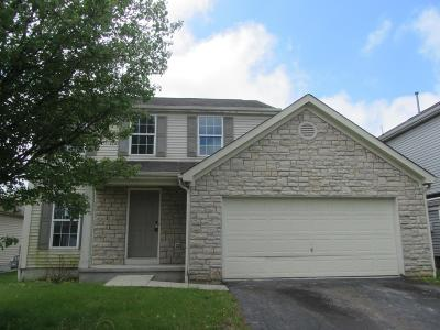 Grove City Single Family Home For Sale: 3593 Quickwater Road