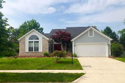 Hilliard Single Family Home For Sale: 5403 Red Wynne Lane