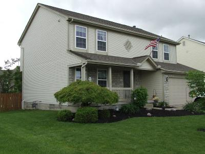 Grove City Single Family Home For Sale: 3753 Larchmere Drive