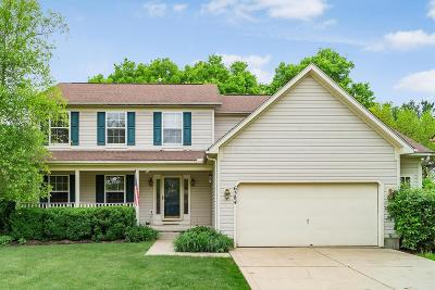 Grove City Single Family Home For Sale: 6384 Windcliff Drive