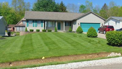 Howard Single Family Home For Sale: 1141 Apple Valley Drive