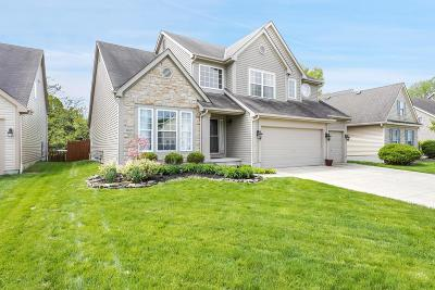 Westerville Single Family Home For Sale: 1169 Freshman Drive