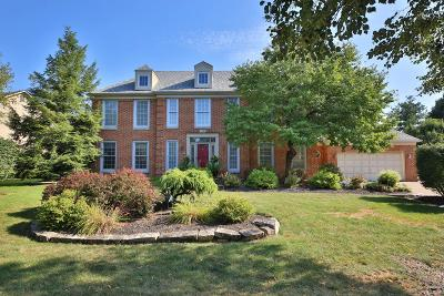 Westerville Single Family Home For Sale: 1208 Hooverview Drive