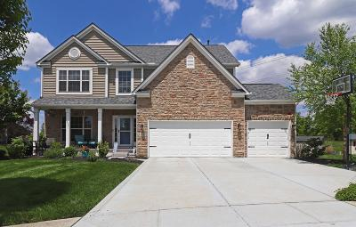 Lewis Center Single Family Home For Sale: 3139 Abbey Knoll Court