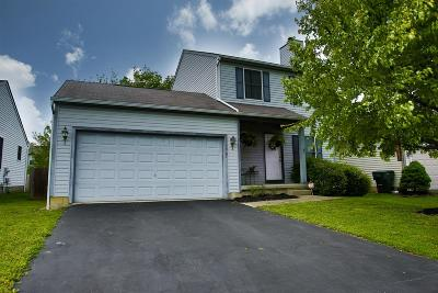 Grove City Single Family Home For Sale: 1907 Winding Hollow Drive
