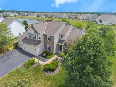 Galena Single Family Home For Sale: 6400 Falling Meadows Drive