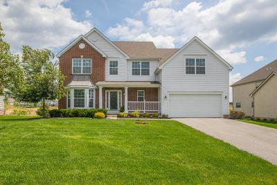 Dublin Single Family Home For Sale: 4176 Wyandotte Woods Boulevard
