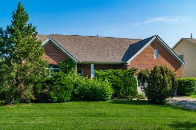 Hilliard Single Family Home For Sale: 6032 Homestead Court