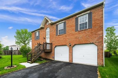 Single Family Home For Sale: 8780 Greylag Loop