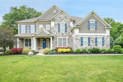 Galena Single Family Home For Sale: 5071 Cornice Court