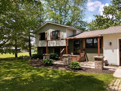Delaware Single Family Home For Sale: 3838 Piatt Road