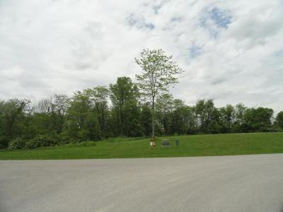 Plain City Residential Lots & Land For Sale: 13000 Wycliffe Drive #lot 9